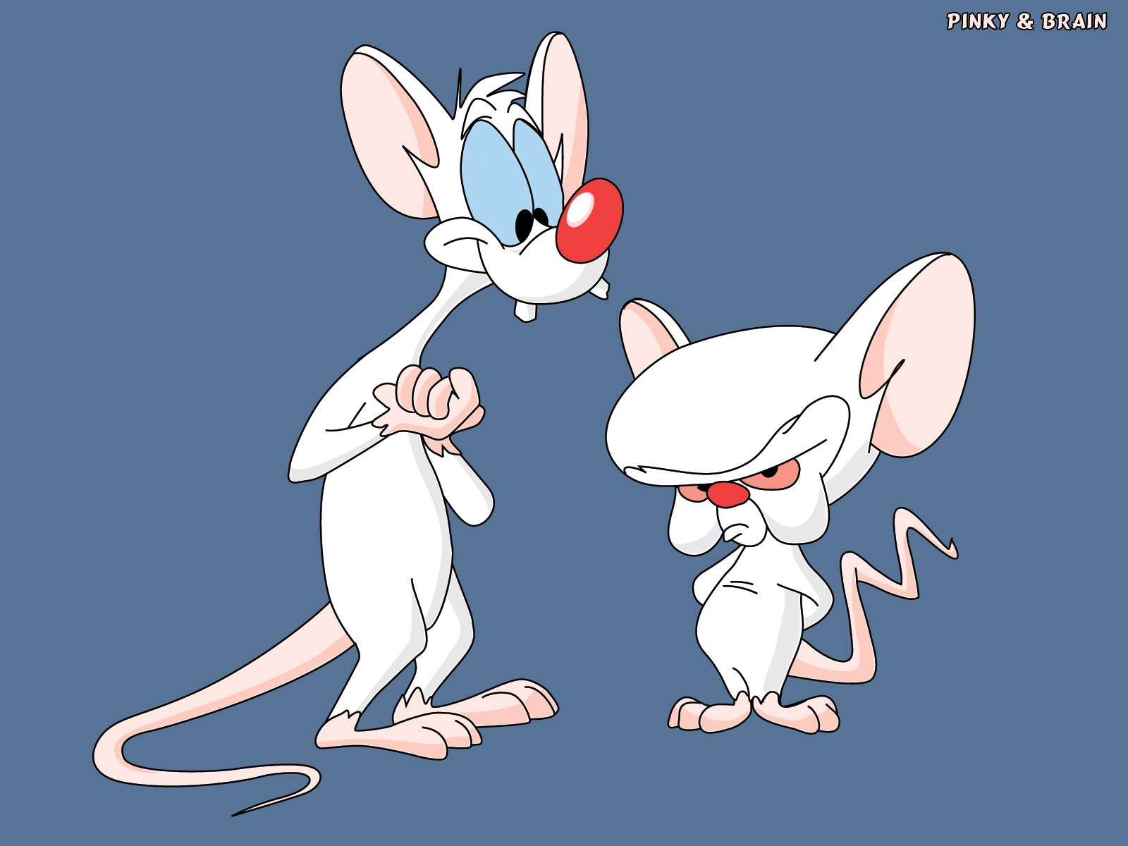 Fun Facts About Pinky And The Brain: Pinky And The Brain (characters)