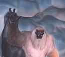 Species of Bigfoots