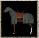 Bay Warhorse.jpg