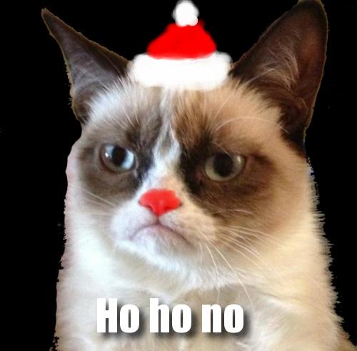 Grumpy Cat Holiday Music Video