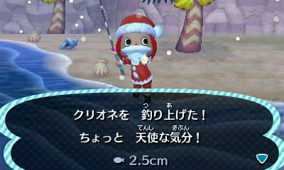 Image - Sea butterfly new leaf.jpg - Animal Crossing Wiki Oarfish Animal Crossing