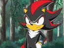 Shadow X sonic x.jpg