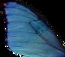 Ala di farfalla blu