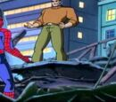 Spider-Man: The Animated Series Season 1 9
