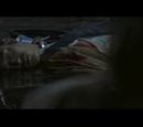 Hiroki Sugimura (Film)
