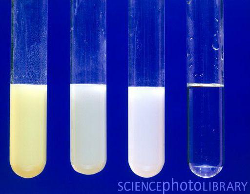 Chemical Properties Of Silver Halide