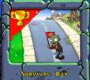 Survival: Day