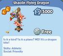 Shaolin Flying Dragon