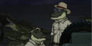 Alligators.PNG