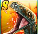Super Rare Juravenator