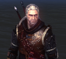 Objetos de The Witcher 2