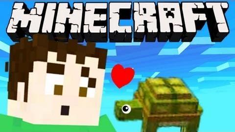 Minecraft - PET TURTLE