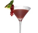 Currant liqueur recipes