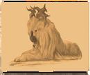 Liondesglaces.png