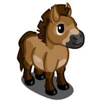Image Przewalski Mini Horse Farmville Wiki