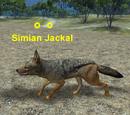Simian Jackal
