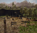Spalona farma
