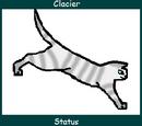 Glacier (Up for Adoption)