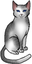 Ivypool.warrior.png