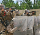4th Marine Expeditionary Force