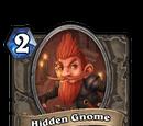 Hidden Gnome