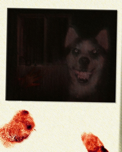 Smile.dog [Creepypasta] Smile.dog