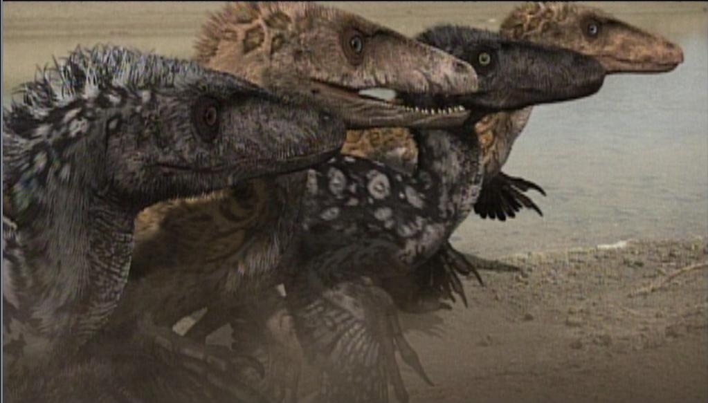 Dinosaur Revolution Dinheirosaurus
