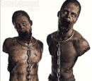 Zumbis de Estimação de Michonne