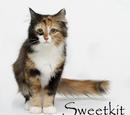 Sweetkit