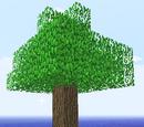 Semi-renewable Resources