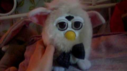 Furdy (Furby Fake)