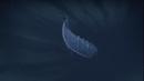 A falling Vikke Ship.png