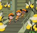 Images from Bee Story