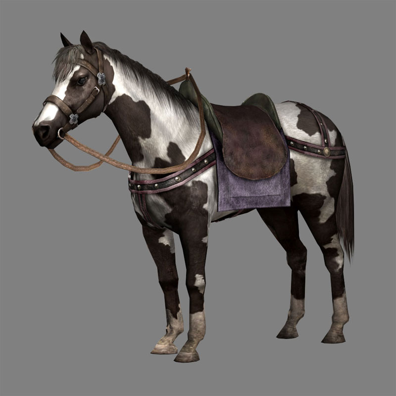 Black Bay Horse (DW8 DLC).jpg