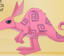 Grumpy kangaroo