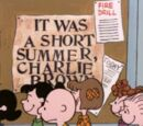 Fue un verano corto, Carlitos