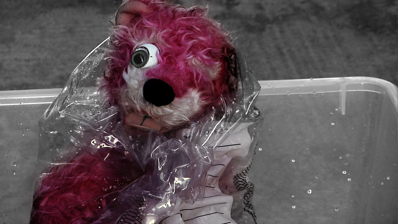 http://img4.wikia.nocookie.net/__cb20130801004213/breakingbad/images/1/15/PinkBear.jpg