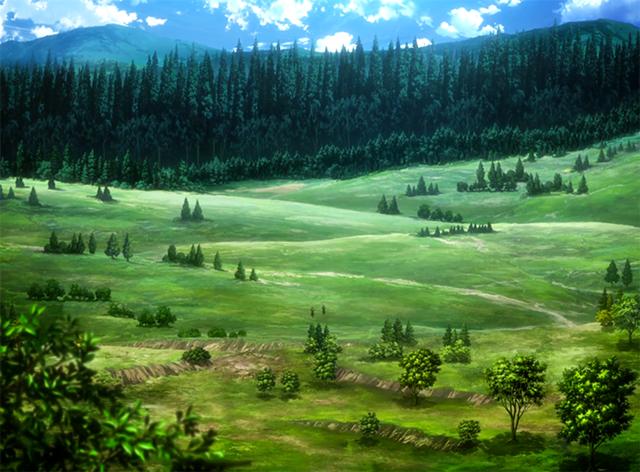 Campos - Página 19 Bosque_de_los_%C3%A1rboles_gigantes_(anime)