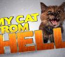 Сити Китти (Адская кошка) (2012)