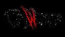 Catwoman Vol 4 Logo.png