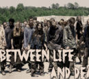 Between Life And Death/Datos