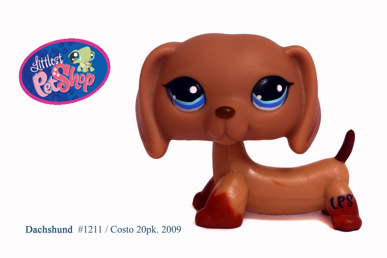 lps dachshund Colouring Pages