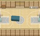Sala gimnastyczna (dom pani Foster)