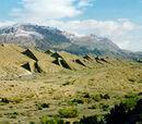 WWF terrestrial ecoregions