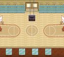 Sala gimnastyczna (szkoła Maksa)