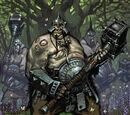 Historia de los Reinos Ogros