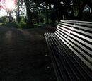 Legata Park/Park Bench