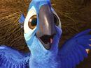 Mainpage-Navmap-Thumb-Blu-(chick).jpg