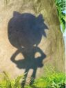 Amy Sonic Boom.jpg