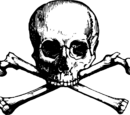 Pirate Role Play Wiki